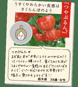 【こくパリッ®】名前の通りのコクと食感 こくパリッ®は名前のとおりのこくと食感でした。とても甘く美味しかったです。子供ももっと食べたい!というくらいでした。栃木県45歳女性