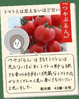 【つやぷるん®】まず見た目が本当にトマトのつやなの??っていうくらい輝いて、食べてみても皮が薄く柔らかい食感はまるでさくらんぼのようで、小さいお子様からお年寄りまで幅広く愛されるトマトです!栃木県38歳女性